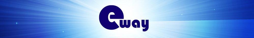 e Way Solutions Enterprise