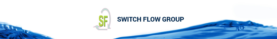 Switch Flow Group