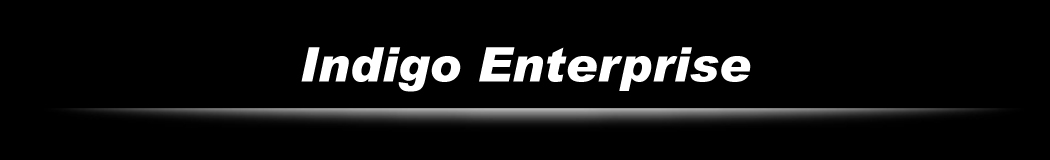 Indigo Enterprise