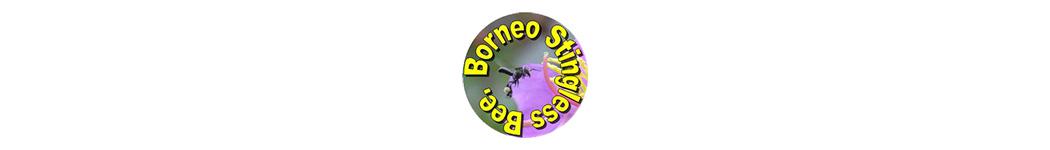Borneo Stingless Bee Sdn Bhd