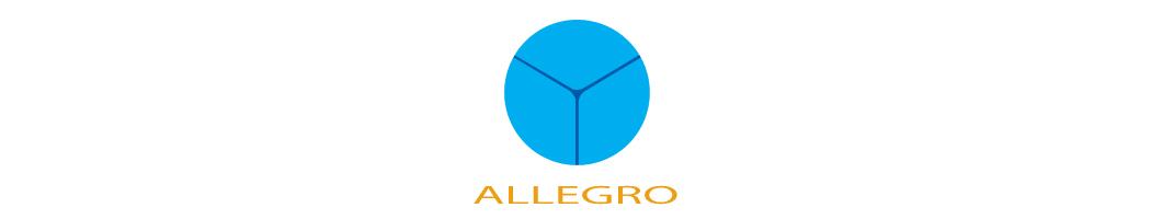 Allegro Industrial Supplies & Services
