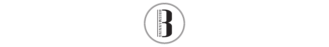 Brismanning (M) Sdn Bhd
