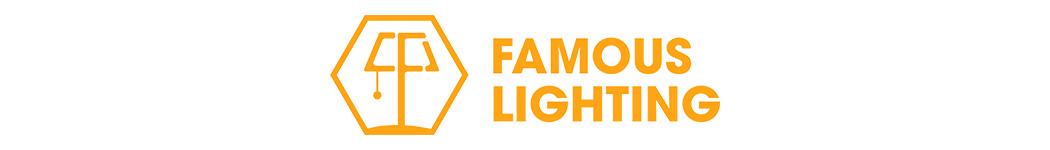 FAMOUS LIGHTING ENTERPRISE