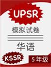 KSSR Chinese UPSR Module Paper Year 5