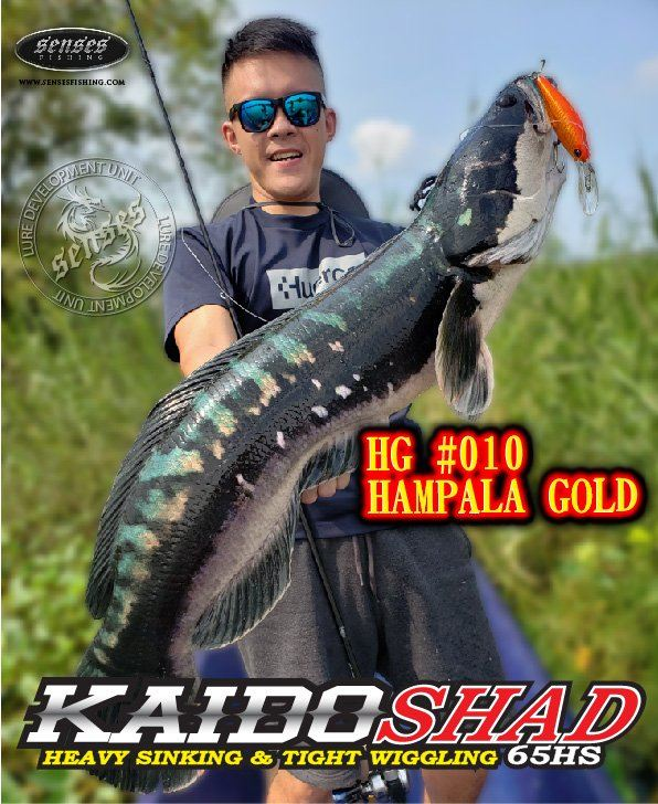 KAIDO SHAD 65MM HEAVY SINKING - HAMPALA GOLD - 11G
