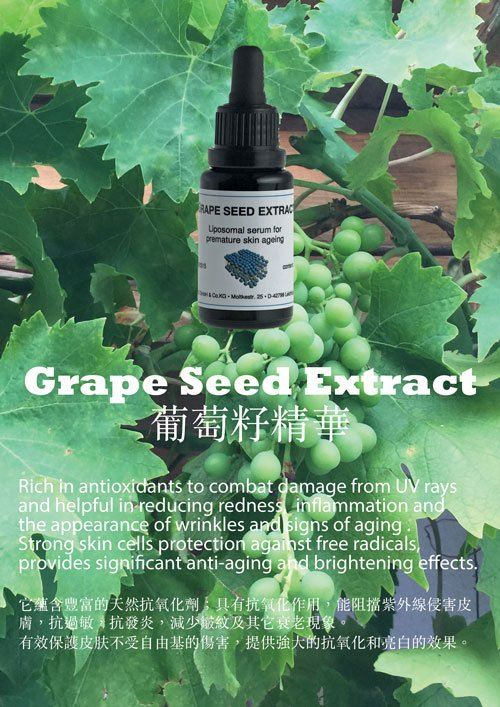 Benefits of Grape Seed Extract