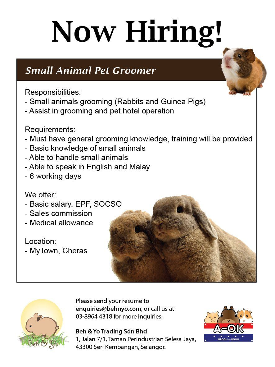 Vacancy - Small Animal Pet Groomer