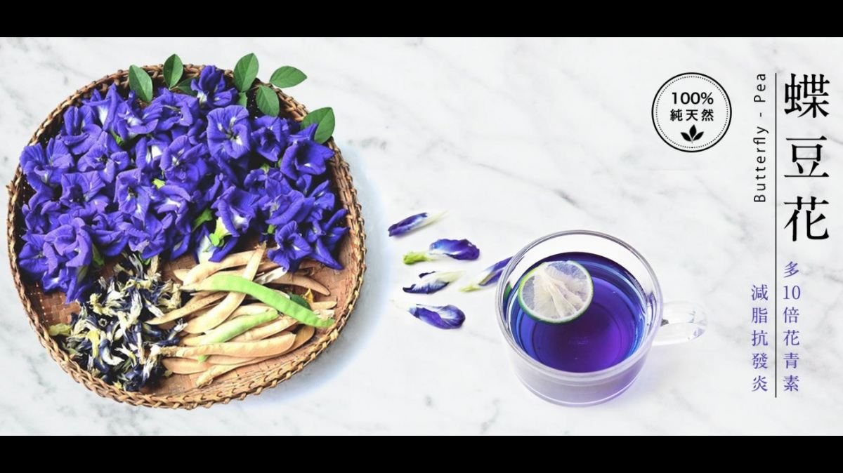�������������� Butterfly Pea Flower Coming Soon!