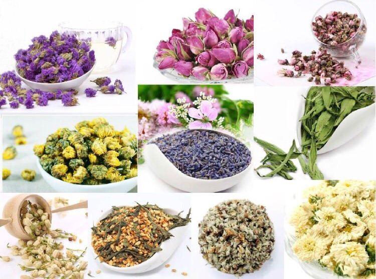 Wholesaler Flower Tea Malaysia
