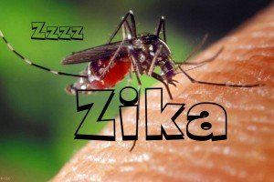 WHAT IS ZIKA VIRUS?