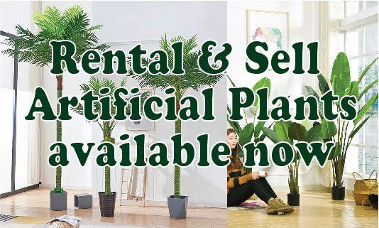 Rental & Sell Artificial Plants available