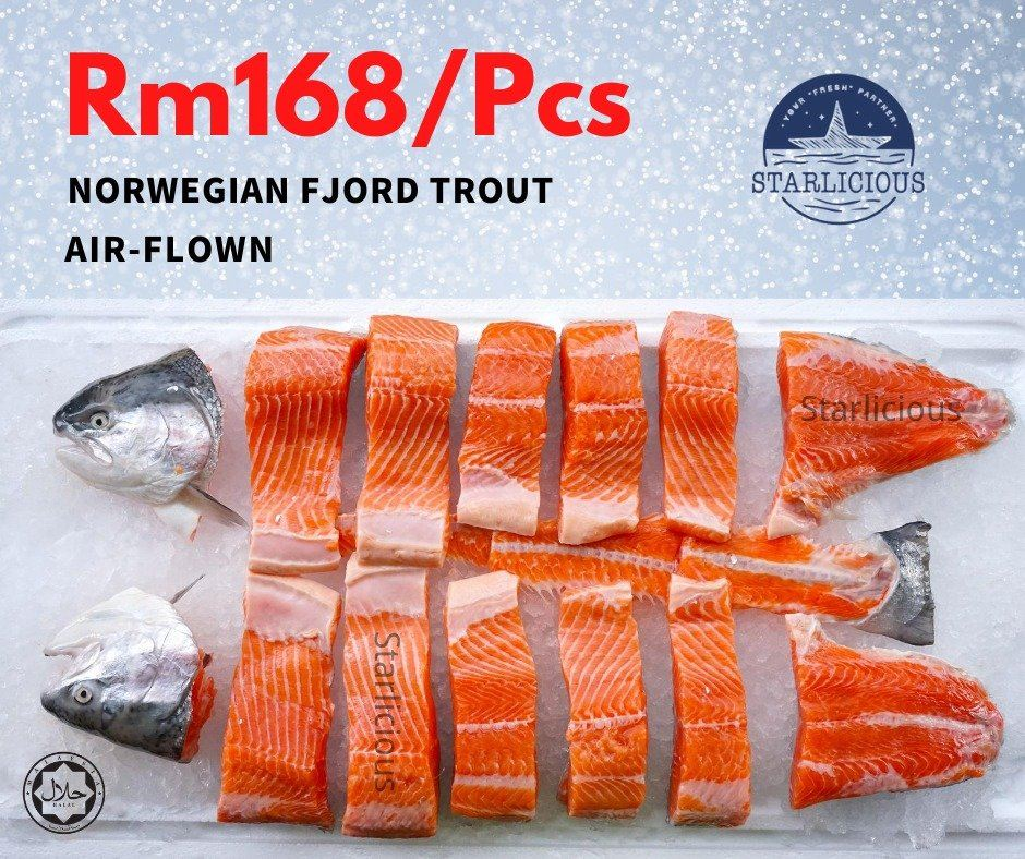 Norwegian Fjord Trout on Crazy SALE RM168/fish