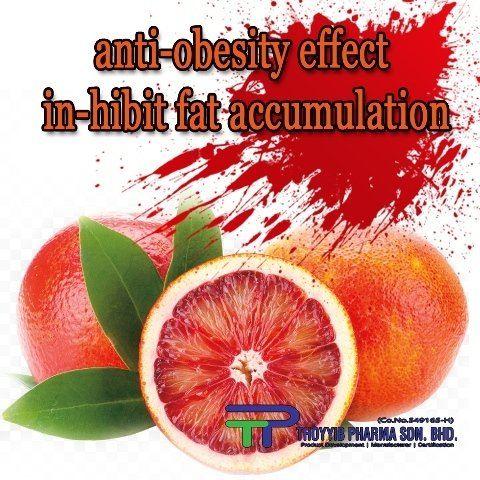 New Ingredient - Morosil (Blood Orange) - To Inhibit Fat Cells Accumulation (Anti-Obesity)