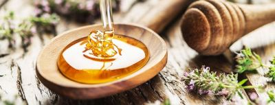 THE NATURAL WONDERS OF WILD TUALANG HONEY FROM INDONESIA