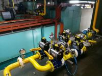 MAXON BURNER - GAS CONVERSION PROJECT FROM LPG TO NG