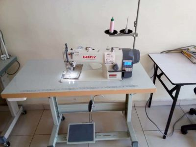 Gemsy And Typical Hi Speed Sewing Machine
