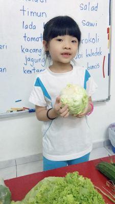 Sayur-sayuran 2019