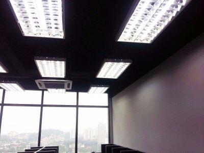 2 x 4 reflection florocent lights black colour ceiling paint