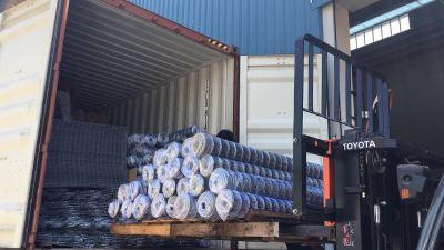 Export Galvanised Wire Mesh To Indonesia