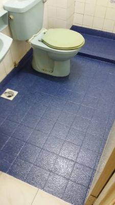 Toilet Leaking