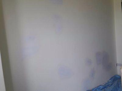 D'Alamanda Condo External Wall Crack