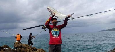 Sotelo Angler - Trevally