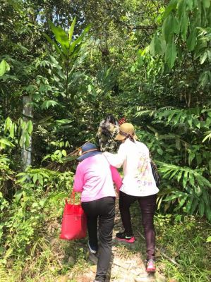 Plantation Site Visit on 22nd March 2018
