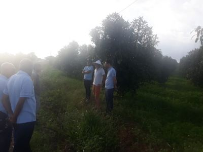 OCT 2019 - VIETNAM - FARMS VISIT WITH PRINCIPLE