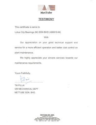 MetTube - Testimony