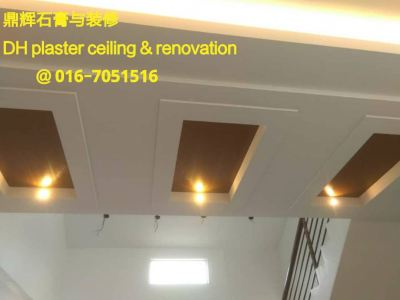 Plaster Ceiling ʯ���컨��