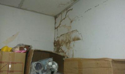 Termite Attack