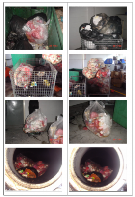 1 TPD for Mix-Organic Wastes