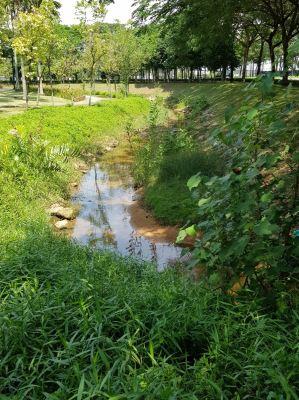 Eco drain in Senibong Cove, Johor Bahru
