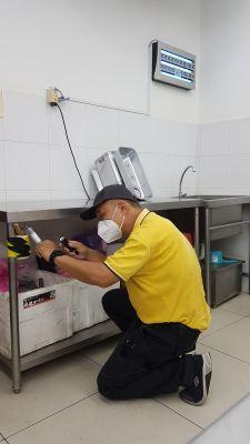 General Pest Control - Bentong - Pahang