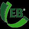 Evergreen Binary Sdn Bhd