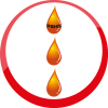 PSHS OIL ENTERPRISE