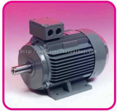 Johor teco single phase and three phase induction motor for Teco electric motor distributors
