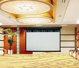 Powerline Motorized Screen