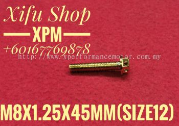 STAINLESS STEEL GOLD COLOR BOLT M8X1.25X45MM SIZE12