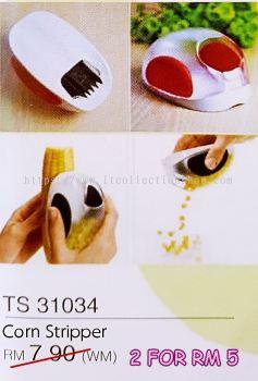 TS 31034