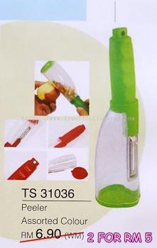 TS 31036