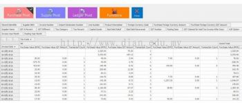 GST Audit Viewer - Dian - Cohezon