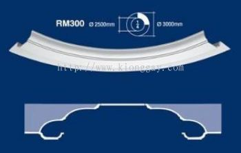 RM300