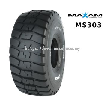 MS303