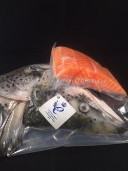 Scottish Salmon Portioned Fillet (200 - 300gm per pcs)