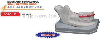 SC-DD-12S Model Gigi Bersaiz Kecil