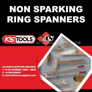 KS TOOLS Non Sparking Ring Spanners