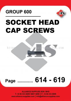600-Socket Head Cap Screws