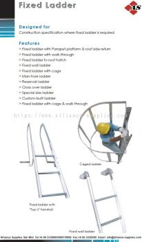 Fixed Ladder With Handrail & Caged Ladder & Fixed Wall Ladder