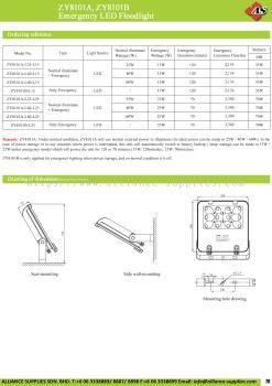 17.04.4 ZY8101A, ZY8101B Emergency LED Floodlight